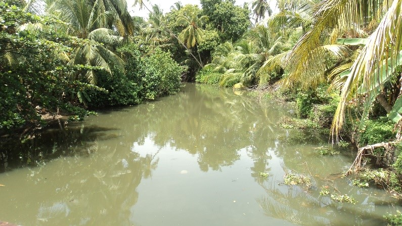 Rehabilitation of Moragoda Ela (Main Canal & Temple Bypass) in Galle